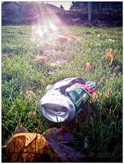 Trashy Can (drewbrewit) Tags: from park city urban usa oregon walk documentary chapin lightroom oregoncity exported chapinpark exportedfromlightroom outputforposterousblog