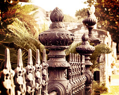 A Friday 13th Fence Friday! (Bhamgal) Tags: detail stone fence iron neworleans palm graves scroll palmetto gardendistrict citiesofthedead friday13th lafayettecemeteryno1 fencefriday