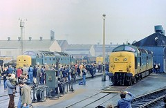 Deltic Day (SydPix) Tags: plant diesel trains works locomotive scrap railways derelict withdrawn doncaster deltic brel class55 55005 55019 royalhighlandfusilier theprinceofwalessownregimentofyorkshire delticday sydyoung