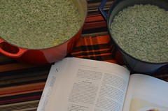 Making Cassoulet (Joe Shlabotnik) Tags: home recipe book duck beans 2012 confit flageolet ourdailytopic january2012