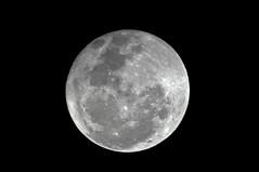 Obsesin... (Joz3.69) Tags: sky moon night pentax nightscene kr gemini 2x 70300 promaster f456 teleconverter2x rawtherapee pentaxkr promasteraf70300f456ld geminiautoteleconverter2x