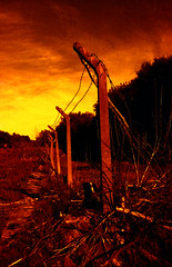 Destroyed Compound (Saturated Imagery) Tags: red silhouette 35mm fire iso200 epson praktica v500 filmslr vivitar28mmf25 prakticatl5b lomographyredscalexr devlopedthephotoshop