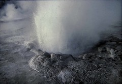 Daisy Geyser Eruption Close-Up... (Sea Moon) Tags: vent cone spray yellowstone geothermal boiling erupting uppergeyserbasin jetting geyserite
