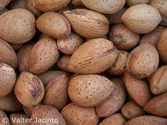 Amndoas // Almonds (Prunus dulcis) (Valter Jacinto | Portugal) Tags: plants portugal nature fruits plantas europe almonds algarve plantae frutos castromarim biodiversity prunus naturephotography rosales rosaceae magnoliophyta magnoliopsida amndoas prunusdulcis azinhal taxonomy:class=magnoliopsida taxonomy:order=rosales taxonomy:family=rosaceae taxonomy:genus=prunus geo:country=portugal taxonomy:kingdom=plantae taxonomy:phylum=magnoliophyta taxonomy:binomial=prunusdulcis cortedogago geo:region=europe