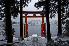 Torii (peterderooij) Tags: lake water japan shrine asia religion shinto kanagawa hakone honshu  shintoism kantoregion hakonemachi kanagawaken   honsh kanagawaprefecture  kantchih  ashigarashimogun kantregion ashigarashimodistrict hkpcxmas2012