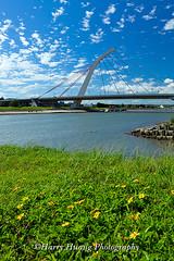 Harry_02645,大直橋,大佳河濱公園,橋樑,橋,建築,河濱公園,公園,綠地,基隆河,河流,台北市