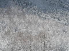 IMGP1947_Full_Pixel_size (PENTAX Iberia) Tags: macro rio pentax retrato nieve paisaje puestadesol ricoh cascada pentaxtodoterreno pentax645z formatomediodigital ricohimagingchange