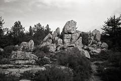 Granite rocks #6 (Franco & Lia) Tags: sardegna blackandwhite film analog rocks sardina noiretblanc granite epson rocce ilford fp4 biancoenero argentique pellicola granito v500 tempiopausania r09 nikonl35af2 vallicciola