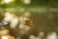 The Journey begins (Just_hobby) Tags: puddle dof outdoor journey paperboat a6000 sel50f18