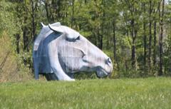 Paardenhoofd (Omroep Zeeland) Tags: paardenhoofd