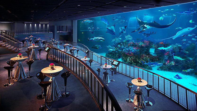 S.E.A. Aquarium.