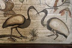 5b_25_2253PompéiCasaDelFauno(MuséeArchéologieNaples)VI12n°2 (cvalette) Tags: casadelfauno pompéi maisondufaune scènenilotique