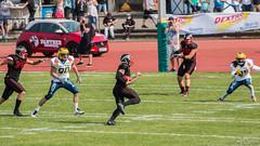 GFL-2016-Panther-9896.jpg (sgh-fotos) Tags: football nfl bowl german panthers sack dsseldorf touchdown defence invaders hildesheim dline fumble gfl amarican quaterback oline interception ofence