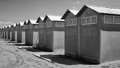 Lido Beach Huts... (Lady Haddon) Tags: venice italy europe beachhuts lido