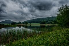 green in green (MMGrafix) Tags: sky lake green water clouds landscape see wasser outdoor himmel grn landschaft nikond7200