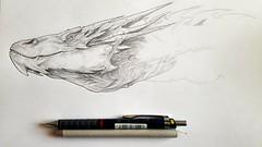 A Work in Progress (TheBeardedDan87) Tags: art dragon drawing tolkien middleearth thehobbit smaug