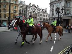 Met Police Mounties (kenjonbro) Tags: uk horse london lady women trafalgarsquare metropolitanpolice wpc kenjonbro mounteddivision fujihs10
