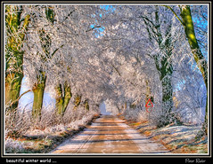 beautiful winter world .... (Explore) (Peter Roder) Tags: street blue schnee trees winter sky snow ice nature clouds frost hoarfrost natur himmel wolken eis bume strase gltte fauhreif