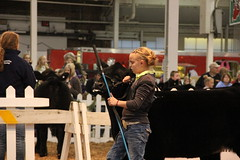 IMG_7394 (Brownfield Ag News) Tags: beef indianapolis congress hoosier