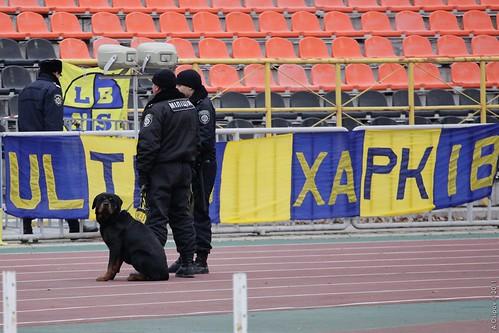 Заря Луганск - Металлист Харьков ©  Aleksandr Osipov