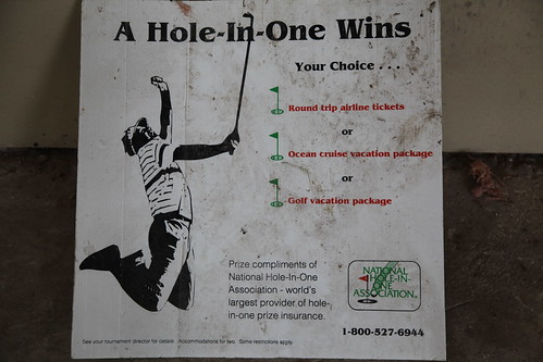 A hole-in-one wings your choice