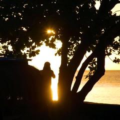 Photographing the sunset (Heaven`s Gate (John)) Tags: ocean sea vacation sun holiday reflection water silhouette photographer dramatic sparkle caribbean sunst stlucia johndalkin heavensgatejohn eastwindsinn
