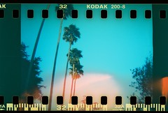 Palácio Cristal (Uka wonderland) Tags: blue trees green portugal 35mm lomo lomography porto f cristal palácio árvores fiana