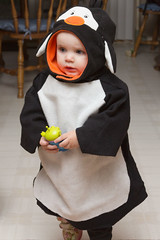 Halloween Penguin (Craig Dyni) Tags: halloween girl toddler madelyn alannah dyni