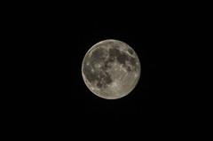 Moon (_Rjc9666_) Tags: moon black night nikon lua 12 493 d5100 ruijorge9666