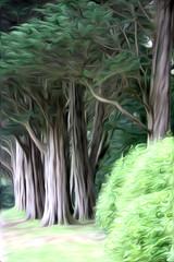 Plas Newydd trees (DianneB 2007.) Tags: house heritage beach wales photoshop nt historic adobe plugin nationaltrust menai anglesey plasnewydd cs5 pixelbender pixelbenderoilpaint