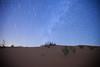 Startrails (TARIQ-M) Tags: canoneos5dmarkiifullfram canonef1635mmf28liiusm riyadh saudiarabia desert sand texture waves dunes landscape startrails tree star stars كانون المملكةالعربيةالسعودية الرياض الصحراء صحراء صحاري رمل الرمل الرمال رمال نفود نفد طعس كثبان تموج تموجات خطوط بر براري نجوم نجم longexposure تعريضطويل نجمه