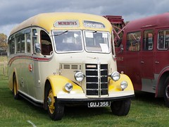 GUJ 356  1950  Bedford OB/Duple Vista  Merediths of Malpas (wheelsnwings2007/Mike) Tags: vintage bedford cheshire rally vista 1950 guj 356 merediths malpas 2011 obduple