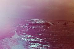 313. (broadeavintes) Tags: color film beach canon 400 a1 algarve revolog