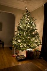 christmas: 4th edition (matt-pearson) Tags: christmas tree real lights star nikon gifts presents fir fraser d7000