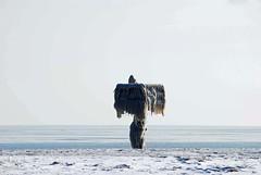 007_edited-1 (courtneyureel) Tags: snow chicago ice frozen december snowy lakemichigan freeze 2010 icebound