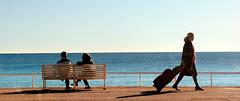 la valise (Jack_from_Paris) Tags: sea mer bird water bench bag nice eau des promenade simple oiseau banc anges mouette valise baie dgrad anglais paisible f160 nikond700 nikkorafs2470mmf28ged jpr1049d700