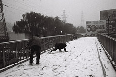(wanstone) Tags: fight beijing snowball t3 snowfall middleaged lucky100