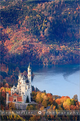 Neuschwanstein Castle - Allgau - Bavaria - Germany (~ Floydian ~ ) Tags: wood autumn mountain lake mountains color colour fall water colors forest canon germany landscape bavaria see morninglight colours view postcard romance postcards romantic neuschwanstein viewpoint meijer henk fussen hohenschwangau allgau floydian proframe proframephotography canoneos1dsmarkiii henkmeijer tegelbahn