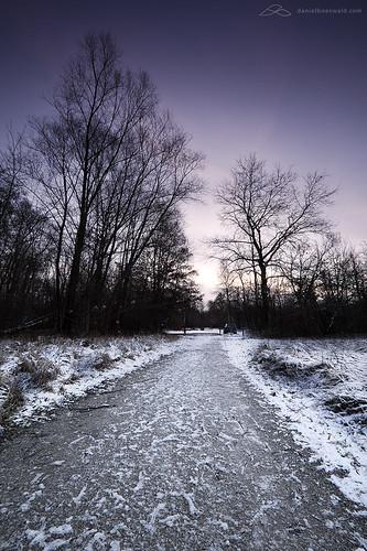 winter now - 14