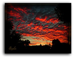 ~~ January 2012 Sunrise ~~ (stephgum32807) Tags: nature sunrise orlando florida alba sonnenaufgang msm zonsopgang nascerdosol altamontesprings  salidadelsol auringonnousu flickeraward