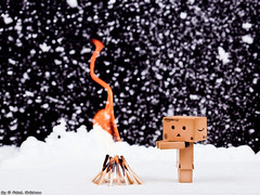 (Sh5be6 :: @FaisalAlbdrane ::) Tags: photo pic photograph   danbo                 sh5be6   faisalalbdrane