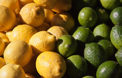 Lemons vs. Limes - Smiley's Market, Sunnyside, Queens NYC (ChrisGoldNY) Tags: nyc newyorkcity newyork green colors fruits yellow vegan colorful forsale markets lemons queens repetition vegetarian posters covers gothamist produce citrus sunnyside limes bookcovers smileys albumcovers eater consumerist cliches coversbook chrisgoldny chrisgoldberg chrisgoldnychris goldbergpostersfor salealbum chrisgold chrisgoldphotos