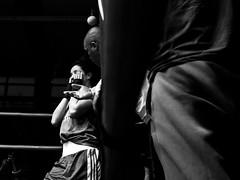 Défaite (Reportages ici et ailleurs) Tags: fight combat leila boxe championnatdefrance 5dmkii boxeféminine boxingbeats