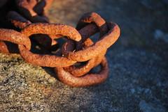 Kjettingbit -|- A bit of chain (erlingsi) Tags: rot norge rust rusty noruega oc rost rouille noorwegen noreg rouill sollys erlingsivertsen kjetting rostiges xidos texturasnaturales fremy