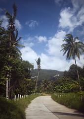 Samui days (mr. Wood) Tags: ocean digital thailand samui siam lamai ep2