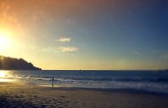 Beach~sunset~tiny human~toy camera cliche (Irene2005) Tags: ocean sanfrancisco sunset sunlight reflection northerncalifornia vintage sand waves pacific tide dude human tiny bakerbeach cliche hcs faketoycameraeffect texturebykimklassen clichesaturday