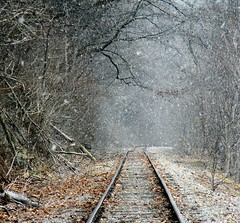 Tracks in the Snow (kjimbo (Wishes for Peace)) Tags: photographyforrecreation flickrstruereflection1 flickrstruereflection2 flickrstruereflection3 flickrstruereflection4 rememberthatmomentlevel4 rememberthatmomentlevel1 magicmomentsinyourlifelevel2 magicmomentsinyourlifelevel1 rememberthatmomentlevel2 rememberthatmomentlevel3 magicmomentsinyourlifelevel3 magicmomentsinyourlifelevel4 rememberthatmomentlevel5 rememberthatmomentlevel10 westernpennsylvaniabirding