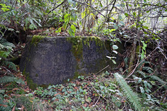 Falk102112h (homeboy63) Tags: fall humboldt ruins 2012 headwatersforest