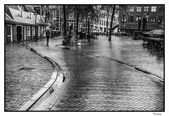 HOTI102014-416R-BYN_FLK (Valentin Andres) Tags: bw holland byn blancoynegro haarlem blackwhite thenetherlands holanda curve curva