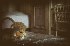Angry lion (Fragile Decay) Tags: urban home was bedroom child decay empty exploring lion forbidden angry abandonded once chateau fragile decayed